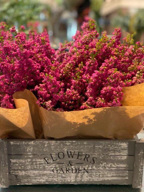 cajita de brezos rosas de docrys